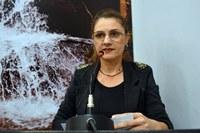 Vereadora questiona termos do contrato para prestação de serviço de iluminação natalina na cidade